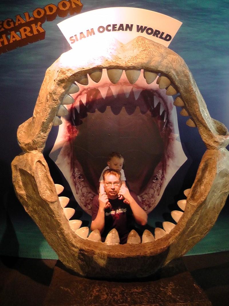 Bangkok for Kids, Siam Ocean Aquarium