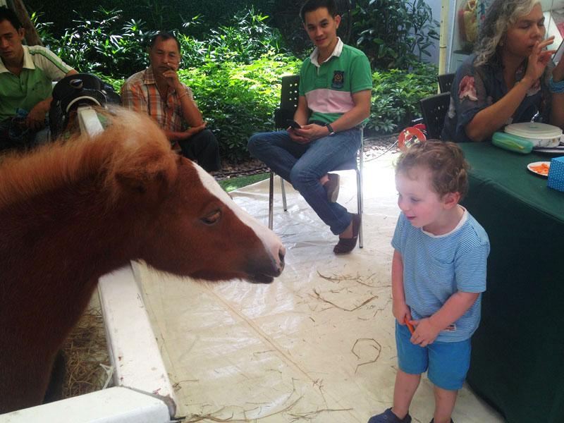 Reuben-&-pony,-Bangkok-farmers-market,-bangkok-with-kids