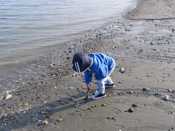 exploring the beach, seattle