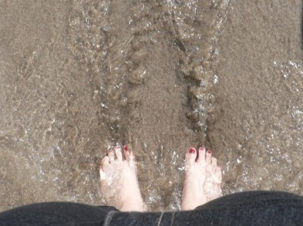 Feet in Water, Coromandal Peninsula