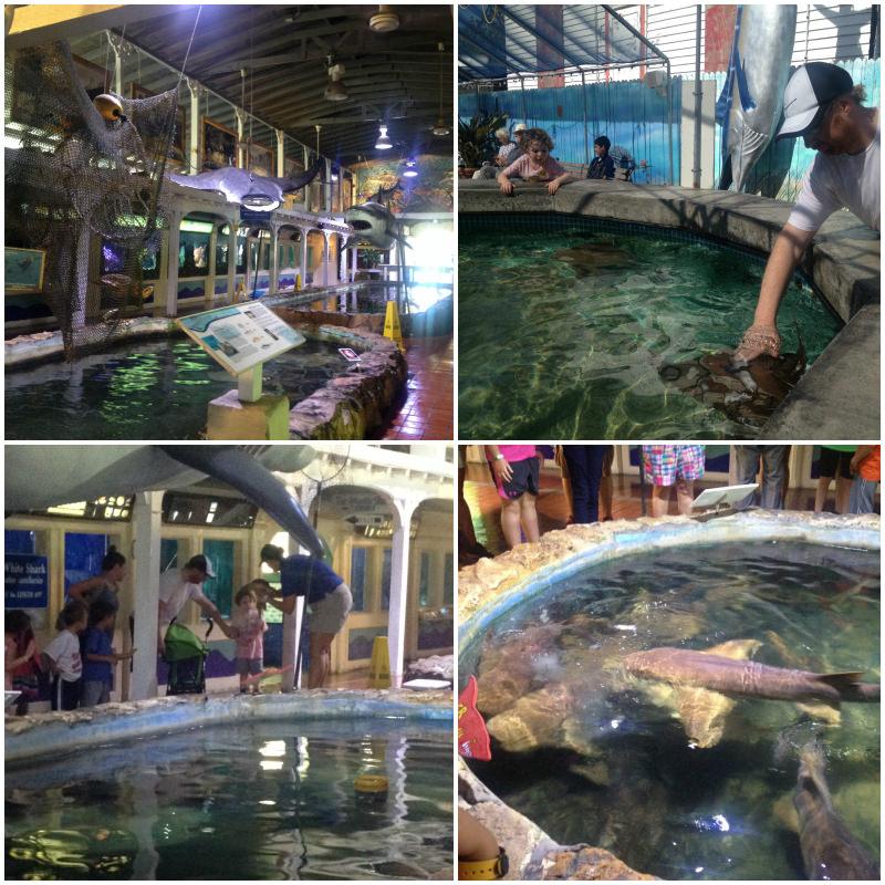 Aquarium, Key West