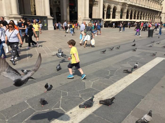 Reuben Chasing Pigeons in Milan, Italy