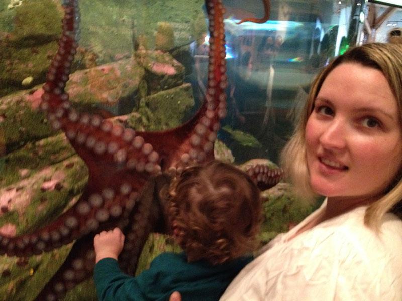 Octopus-Seattle-Aquarium, seattle kids activities