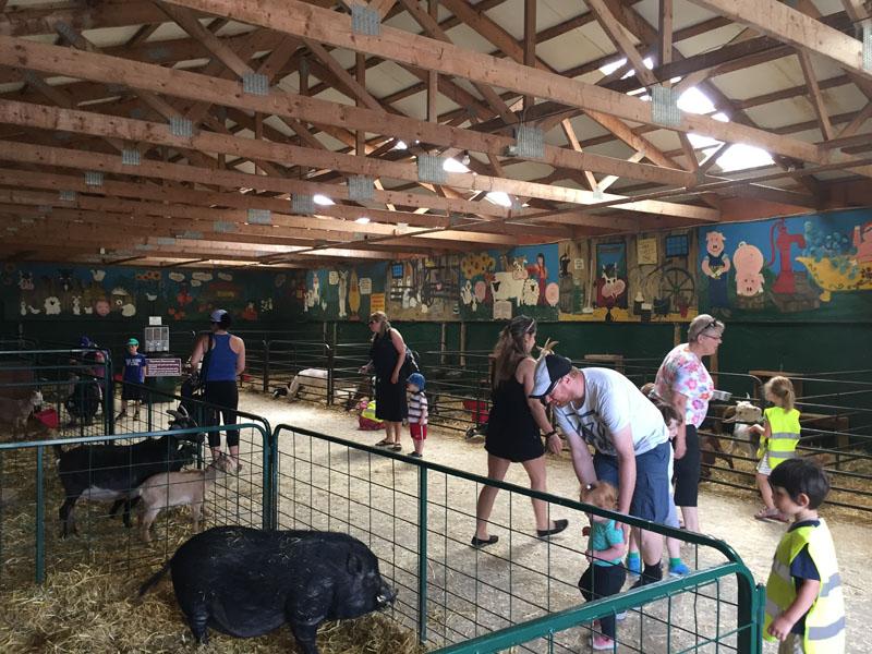 Valley View Animal Farm, Ottawa