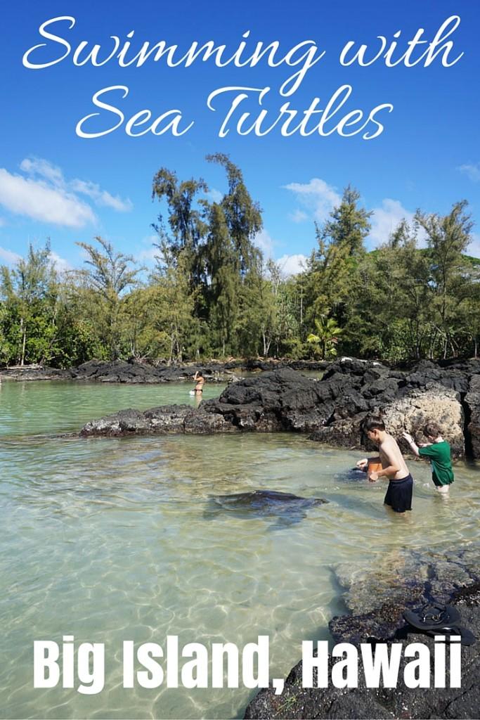 Swimming with Sea Turtles, Big Island, Hawaii