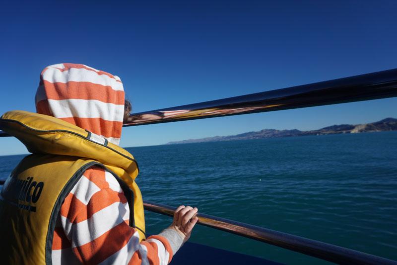 Reuben Whale Watching in Kaikoura, New Zealand