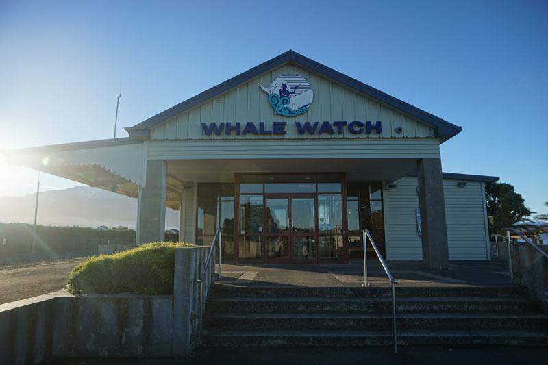 The Whale Way Station, Kaikoura