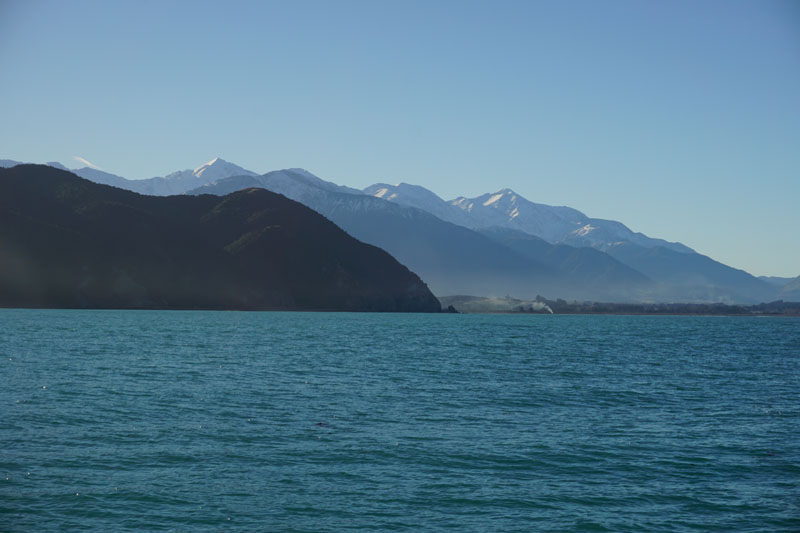 View of the Kaikoura Ranges from Our Whale Watch