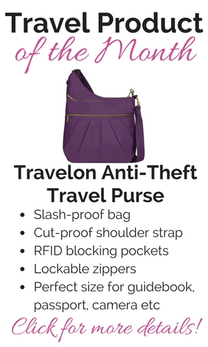 Best Travel Purse