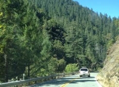 Highlights of Our Road Trip from Seattle to Las Vegas